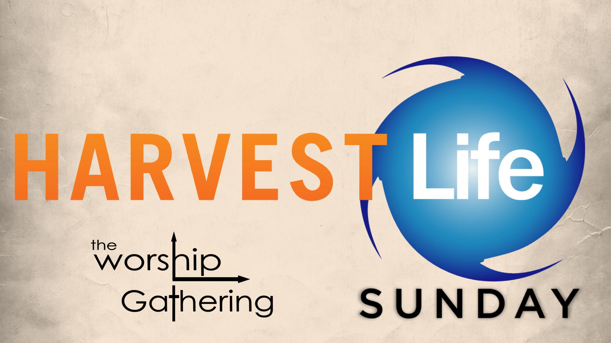 Harvest Life Sunday